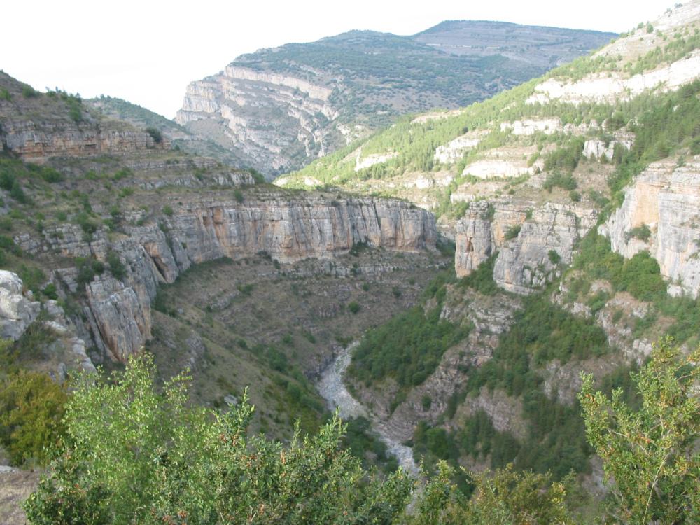 Cañón del río Leza / Foto: Gurrea [CC BY-SA 4.0] Wikimedia Commons