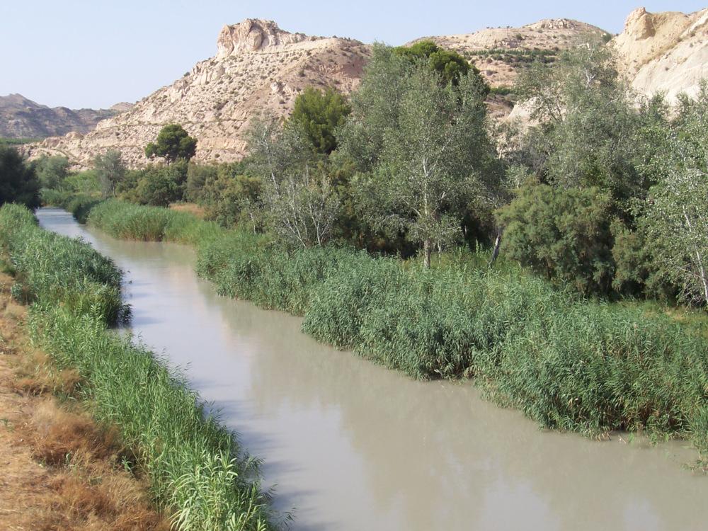Río Segura a su paso por Archena, Murcia / Foto: Juan José Abenza Moreno [CC BY-SA 3.0] Wikimedia Commons