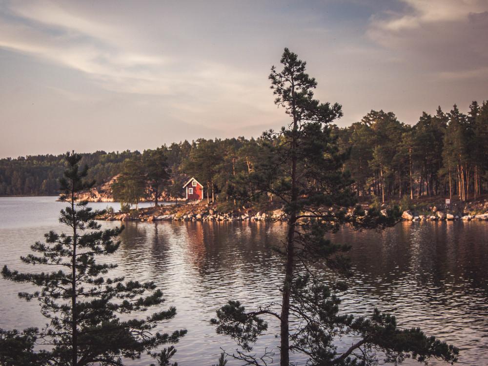Trekking en Suecia / Ines d Anselme (unsplash)