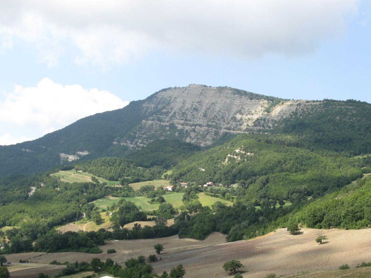Monte Carpegna / Foto: Toni Pecoraro [Public domain]
