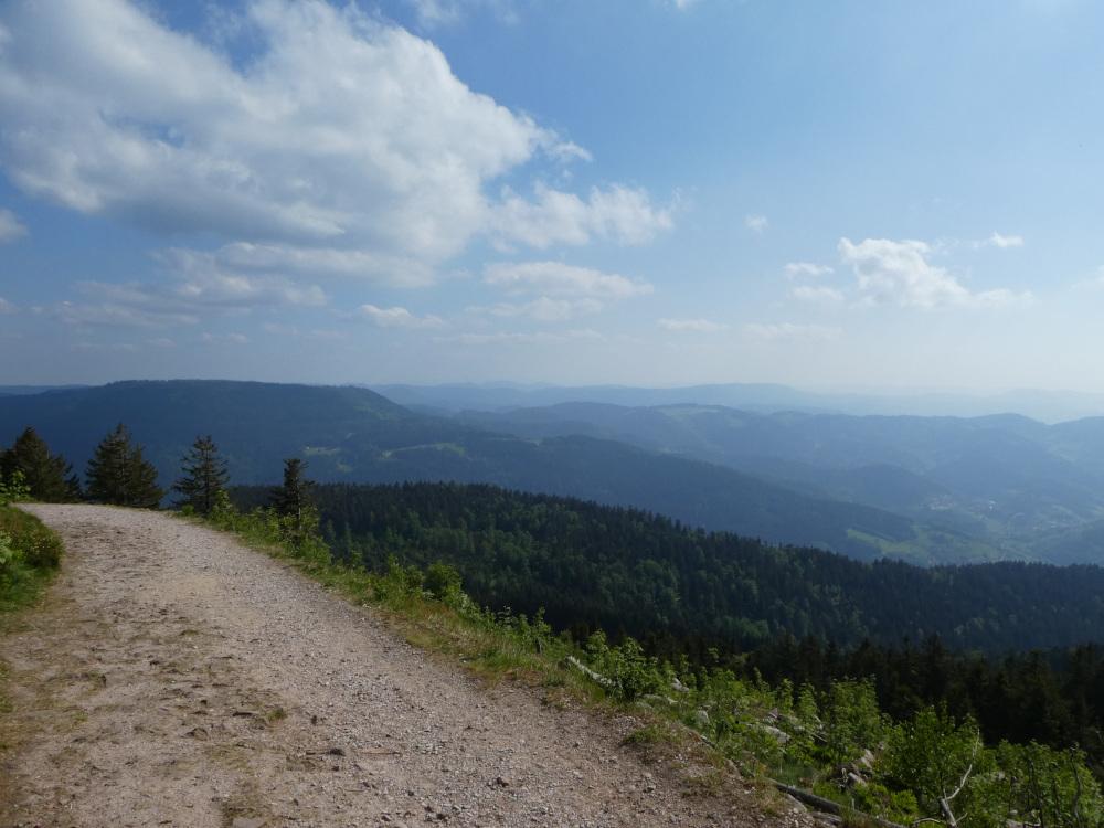 Westweg en la Selva Negra, Alemania / Foto: AsleifThorbaldson (pixabay)