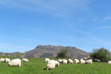 Pirineo Occidental: del Cabo de Higuer a Zuriza