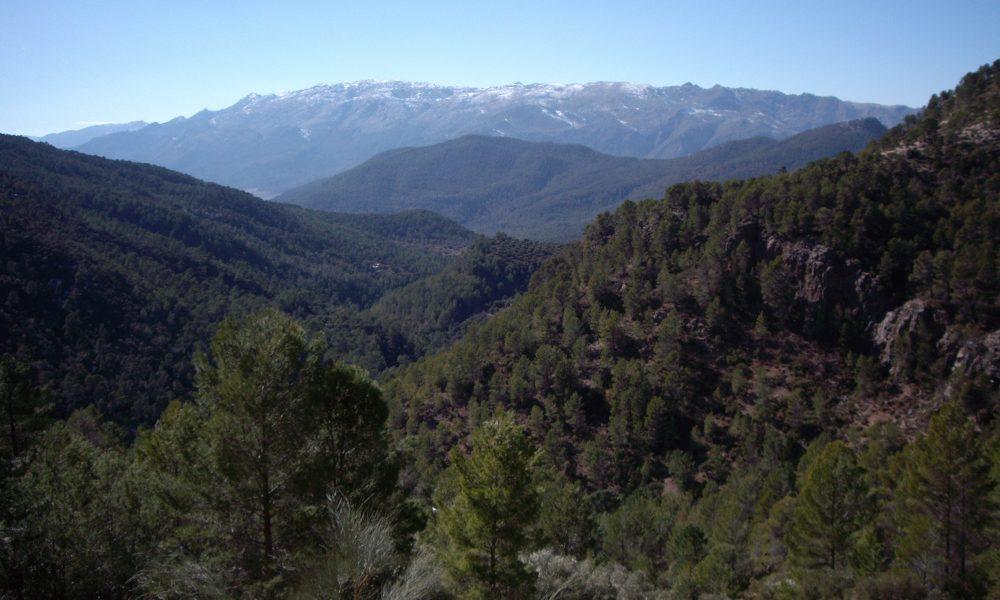 Parque natural de las Sierras de Cazorla, Segura y Las Villas / Foto: Manuel Francisco Parrilla Cabezas. [CC BY-SA 4.0] Wikimedia Commons