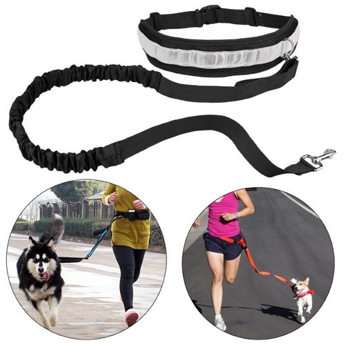 travesiapirenaica-regalos-running-perro-arnes
