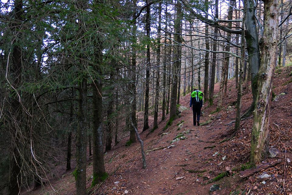 Camino de Elurretxe