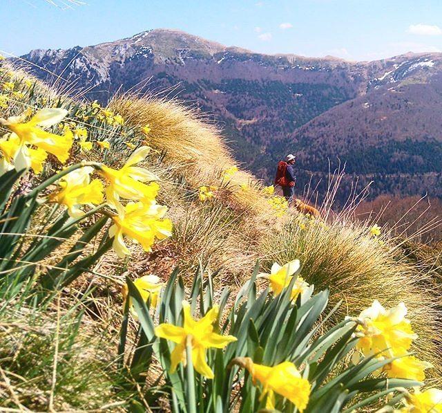 Fotografía montaña Pirineos @malemallol