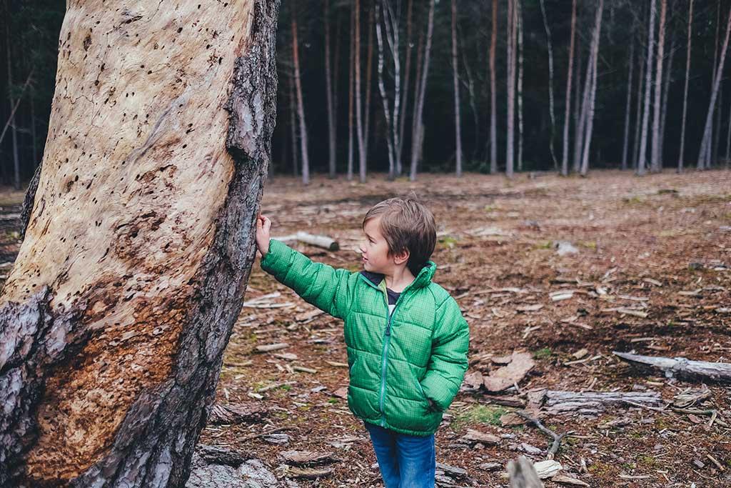 Equipo montaña para niños / Foto: Annie Spratt on Unsplash