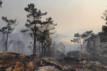 Incendios-Galicia_by_todolore_IG_1400x600_web