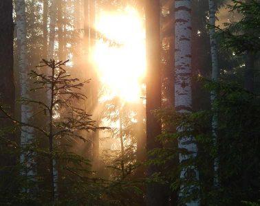 La montaña como terapia: 6 beneficios del outdoor. / Foto (cc): Sergey Turkin
