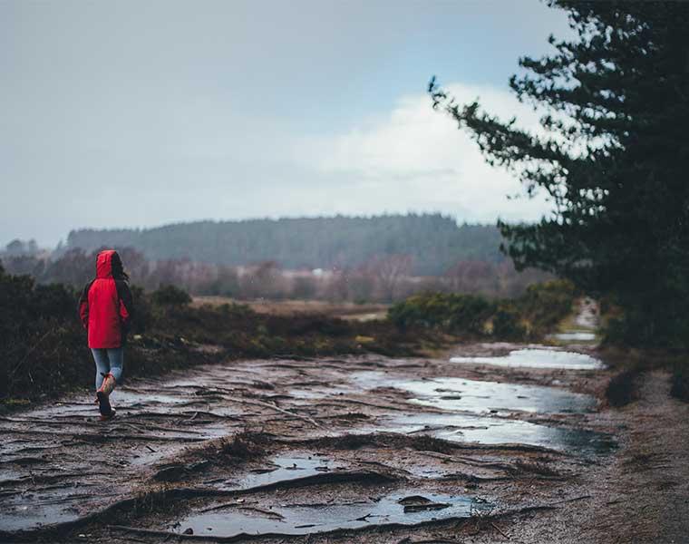 ¡Cuidado por donde se camina! / Foto: Annie Spratt