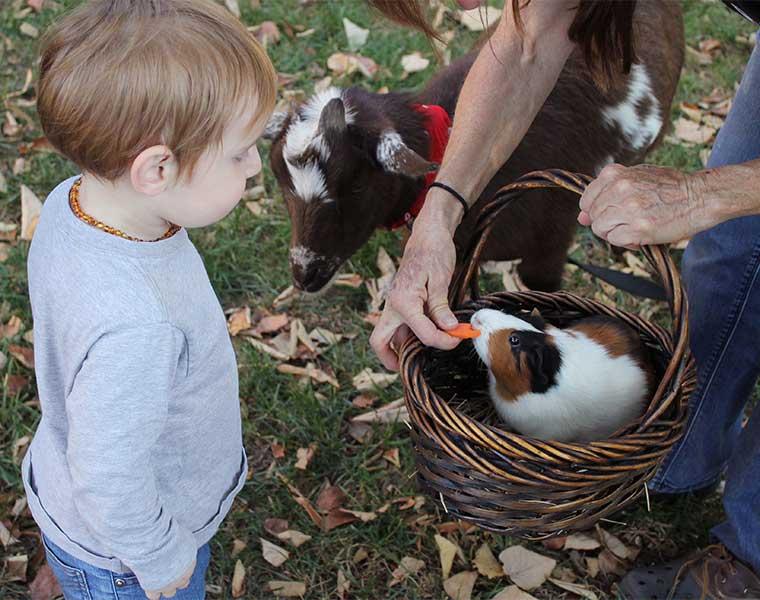 Senderismo con niños: sorprende a tu hijo. / Foto: Dawn