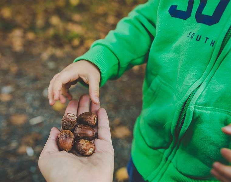 Senderismo con niños: sorprende a tu hijo / Foto: Ewa Pinkonhead