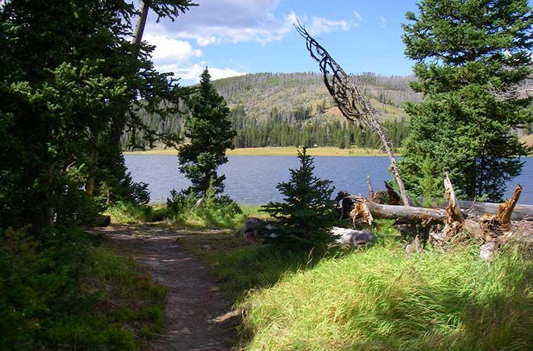 Grebe Lake Trail / Foto: Tim Angeli (Wikimedia Commons)