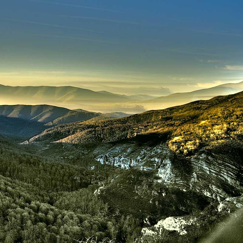 Bosques del Saja / Foto: Juan sin Tierra (CC-BY-SA-2.0)