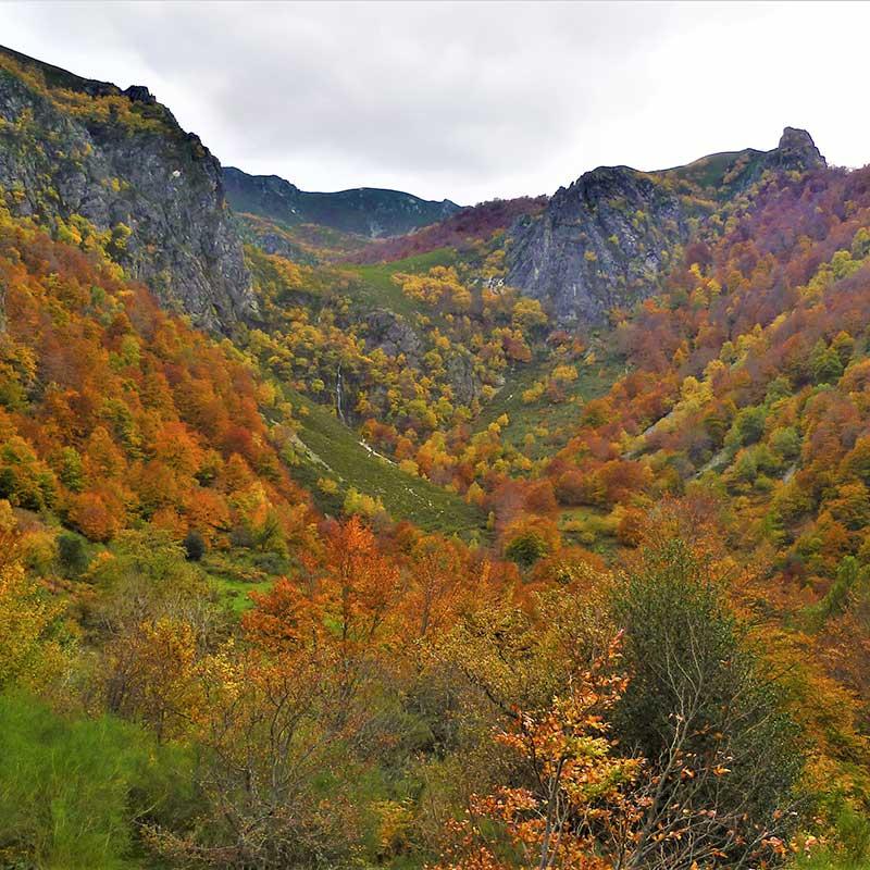 Parque Natural de Redes, Asturias / Foto: AnaisGoepner [CC-BY-SA-4.0)