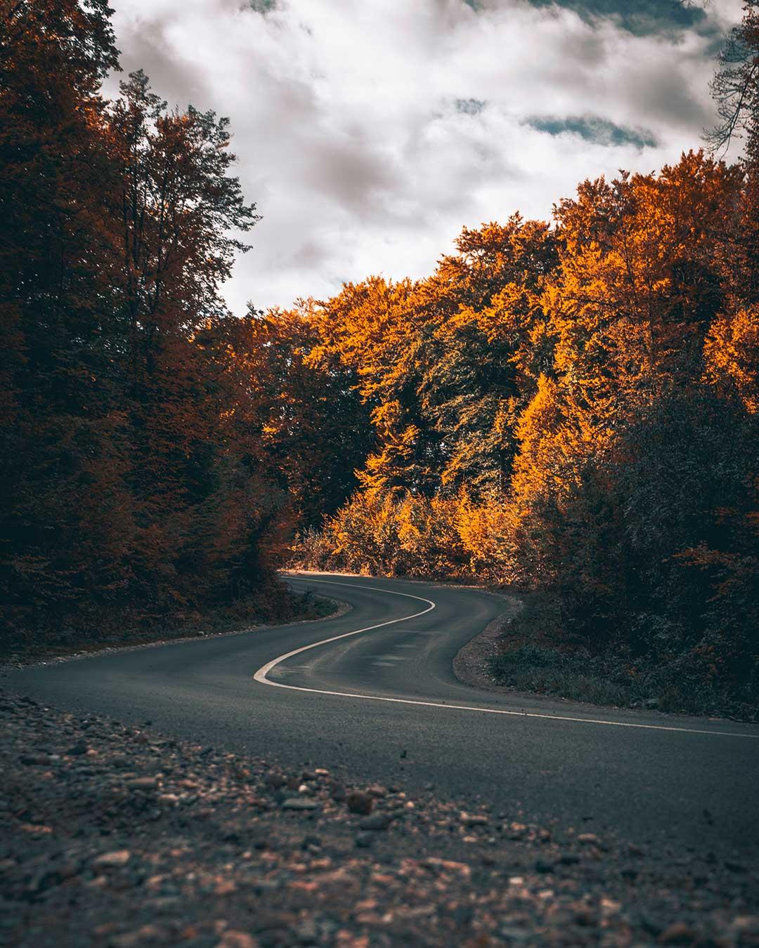 Fotografía otoño: composición / Foto: Val Vesa