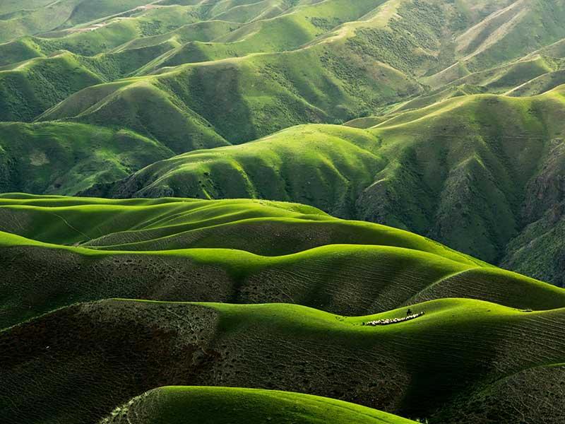 Dejar intacto lo que veas / Foto: Qingbao Meng