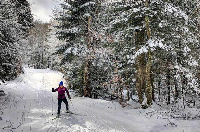 Preparación física para el esquí de fondo / Foto: Phillip Belena