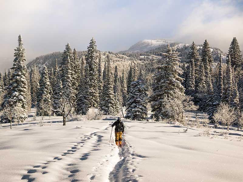 Puesta a punto del equipo de esquí de montaña / Foto: Chris Holder
