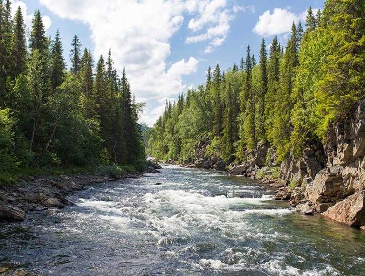 Cómo cruzar un río / Foto: Jon Flobrant (unsplash)