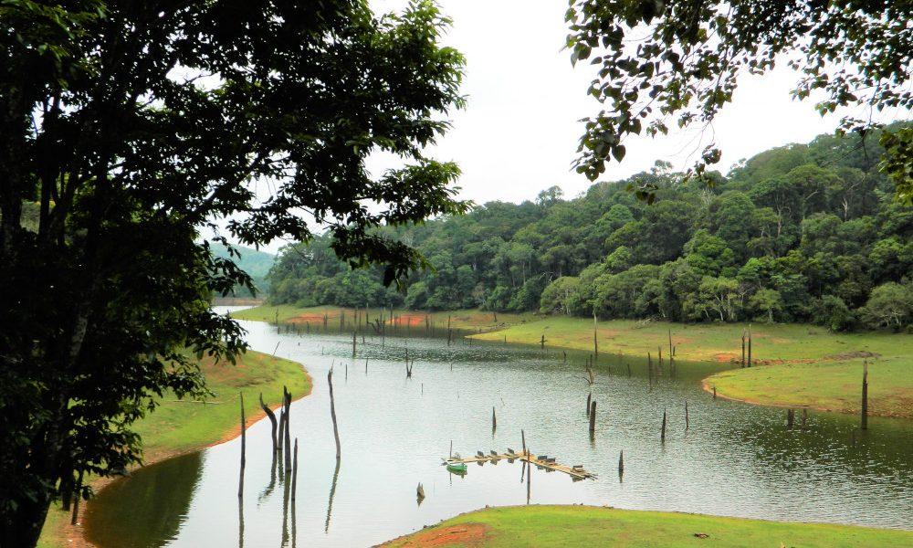 Kerala, Periyar Wildlife Sanctuary, India / Foto: Anand2202 [CC BY-SA 4.0] Wikimedia Commons