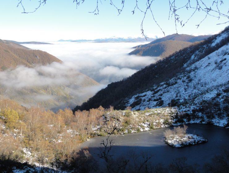 Reserva Natural Integral de Muniellos / Foto: Tanja Freibott, (CC BY-SA 3.0) vía Wikimedia Commons
