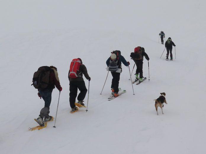 Raquetas de nieve. Foto: Eduardo Azcona